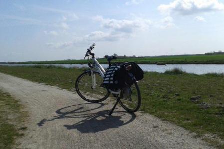 Vélo électrique Giant Aspiro
