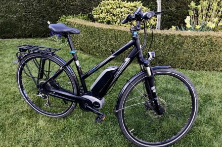 E-Bike Pegasus Premio E9