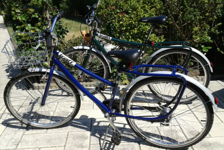 Vélos TRAFF Freestyle