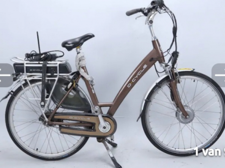 D-CYCLE 36wn8 2019