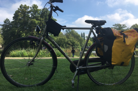 Batavus city bike free