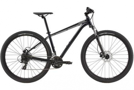 Cannondale Trail 7 Ard Lg 29 M - 2020