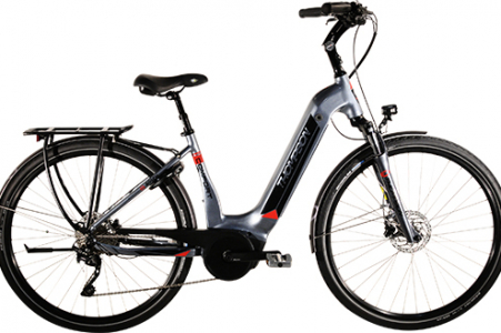 Thompson Comfort Plus E-bike 500wh