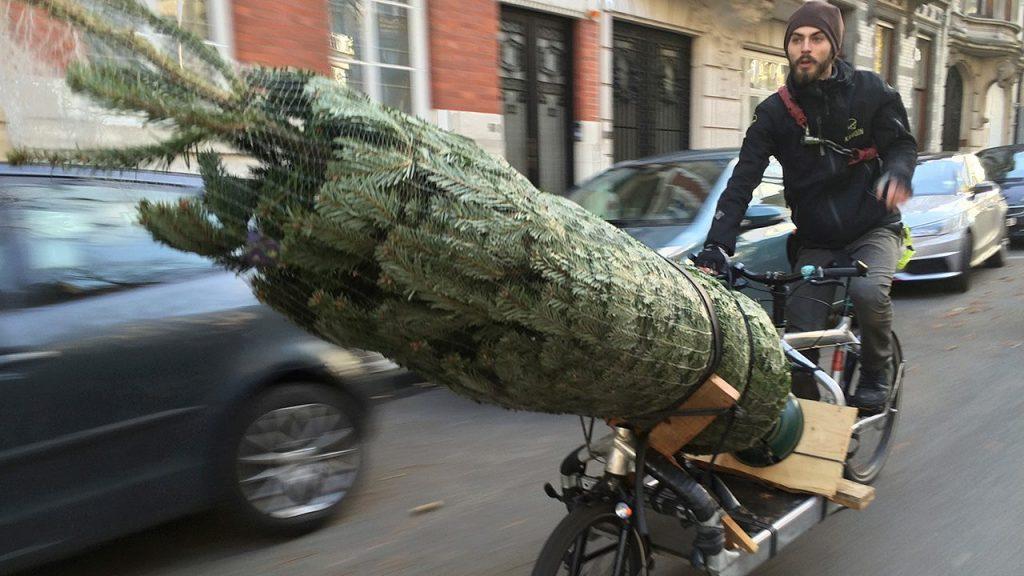 Molenbike kerstboom